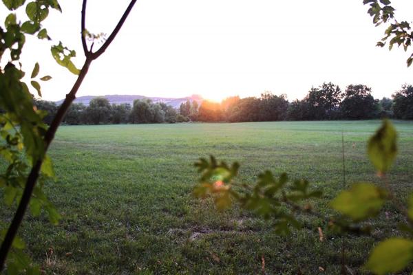 8 hectaren terrein